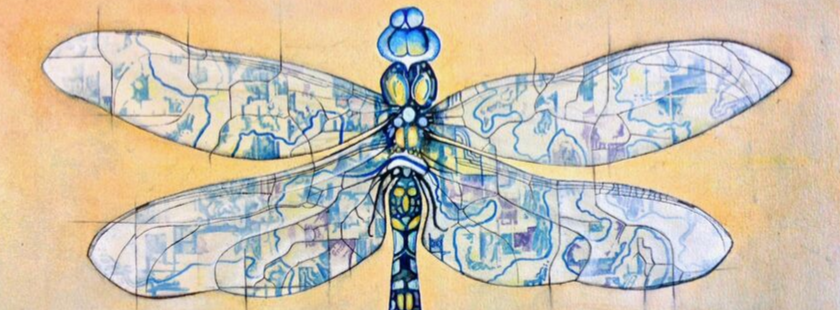 painting of a dragonfly where the patterns on the wings and body are a map of the upper iowa river