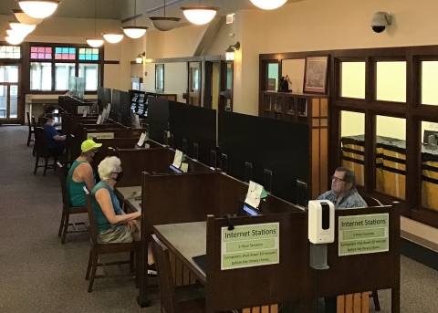 people sit at computers in the library while sunlight streams in from windows behind